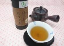 まぼろしの島原茶(ほうじ茶ティーバッグ)