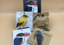 対馬紅茶 野鳥セット