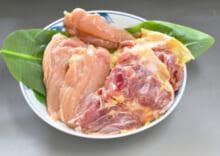 長崎対馬地どり 正肉セット チルド